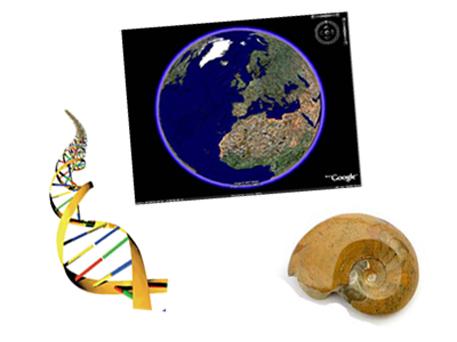 ANIMACIONES BIOLOGIA-GEOLOGIA